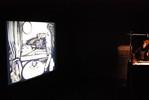 animacje piaskowe