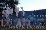 atrakcje weselne - balony 2